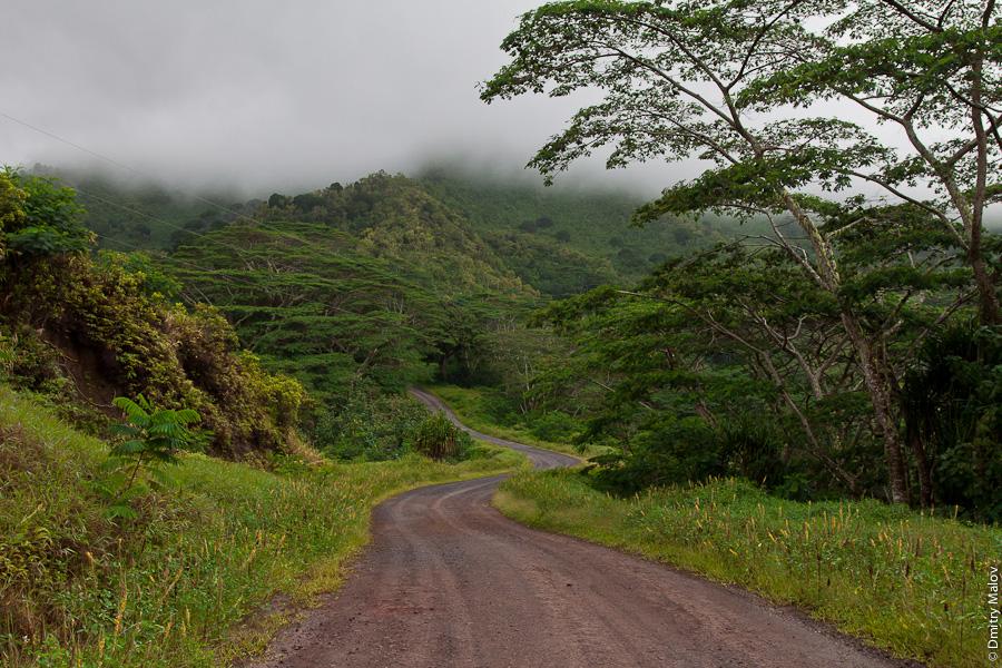 Остров Хива-Оа, Французская Полинезия, грунтовая дорога (грейдер) через лес. Hiva Oa island, French Polynesia, a dirt road through a forest