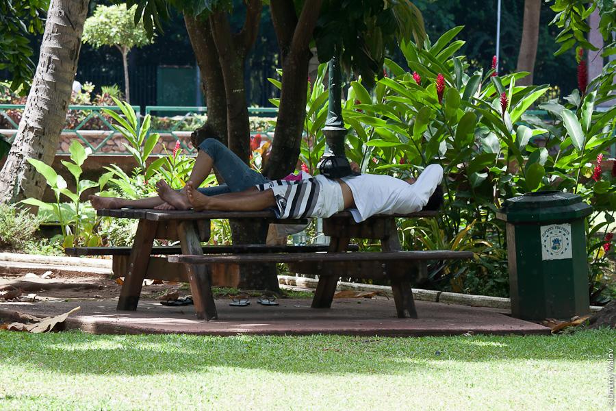 People sleeping in park, Papeete, Tahiti, French Polynesia. Люди спят в парке в городе Папеэте, Таити, Французская Полинезия.