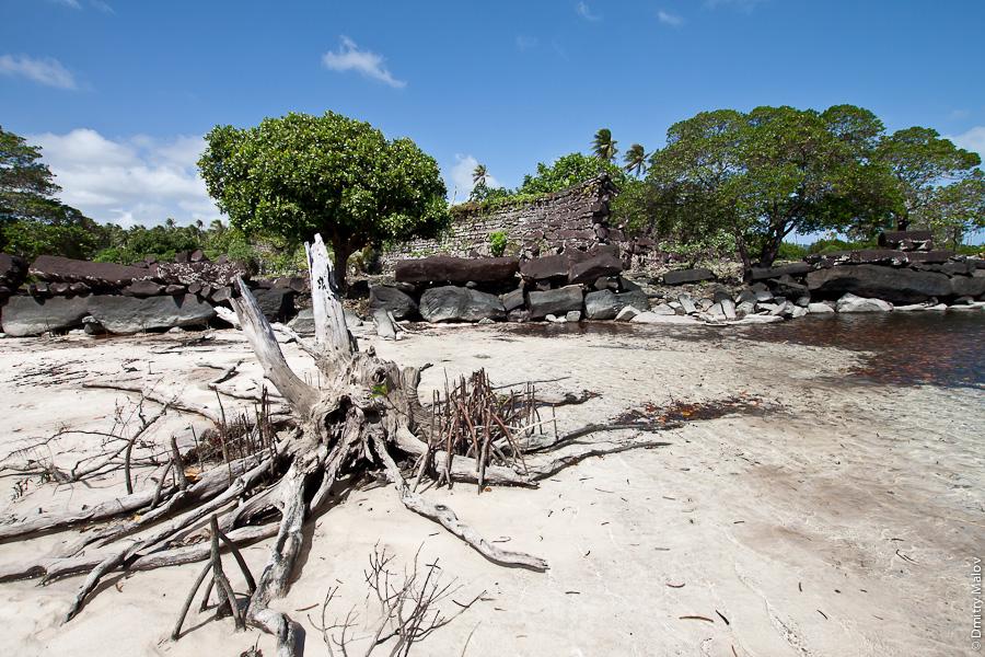 Стены древнего города Нан-Мадола, остров Понпеи, Микронезия, Тихий Океан. Nan Madol walls, Pohnpei, Micronesia, Pacific