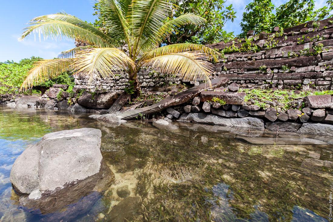 Каналы, стены и набережные Нан-Мадола, центральная часть Нан-Дувас, остров Понпеи, Микронезия, Тихий океан, Океания. Nan Madol channels, walls and embankments, Nan Dowas part, Pohnpei, Micronesia, Pacific