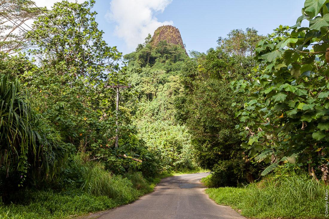 Асфальтовая дорога в джунглях, впереди остроконечная скала-останец из шестиугольных пятиугольных базальтовых лавовых колонн-блоков, остров Понпеи, Микронезия, Океания. Asphalt road in the jungle, a pointed peak made of hexagonal pentagonal basalt lava columns and rocks ahead, Pohnpei island, Micronesia, Oceania