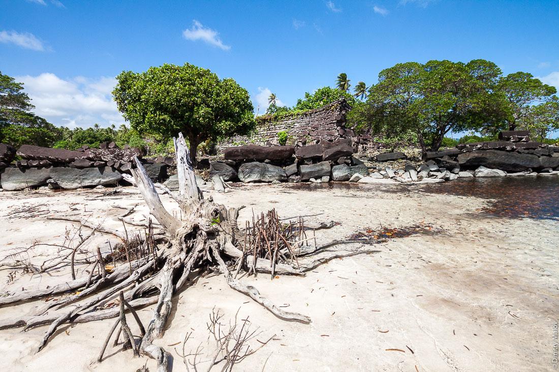 Стены древнего города Нан-Мадола, остров Понпеи, Микронезия, Океания, Тихий Океан. Nan Madol walls, Pohnpei, Micronesia, Oceania, Pacific