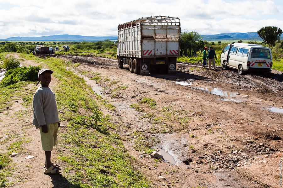 Кенийская дорога, Африка. A dirt road, Kenya, Africa.