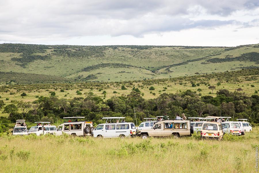 Typical safari in Kenya, Africa. Типичное сафари в Кении, Африка.