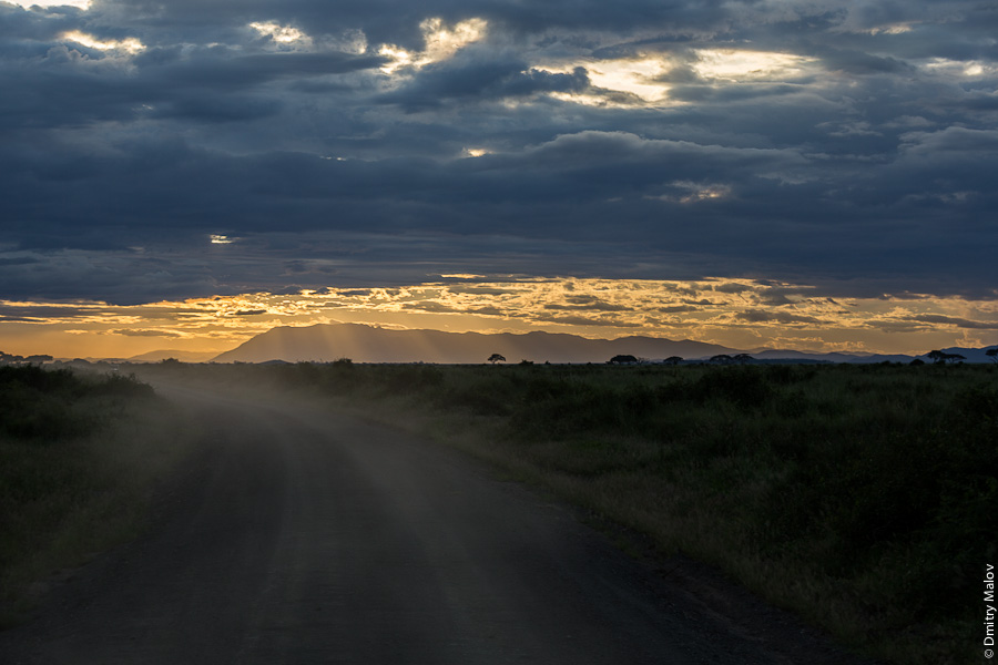Вечер и закат, Амбосели, Кения, Африка. Evening sunset, Amboseli, Kenya, Africa
