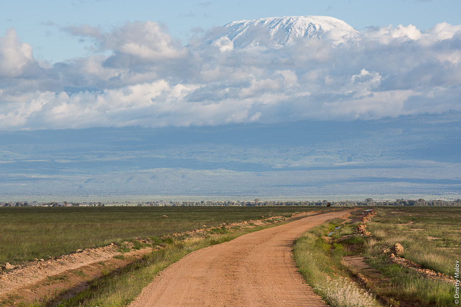 Килиманджаро и грунтовая дорога, вид из парка Амбосели, Кения, Африка. Mount Kilimanjaro and a dirt road, a view from Amboseli park, Kenya, Africa.