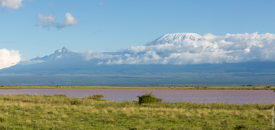 Килиманджаро, озеро Амбосели, Кения, Африка. Mount Kilimanjaro, lake Amboseli park, Kenya, Africa.