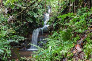 Водопад на острове Кусаие, Микронезия.