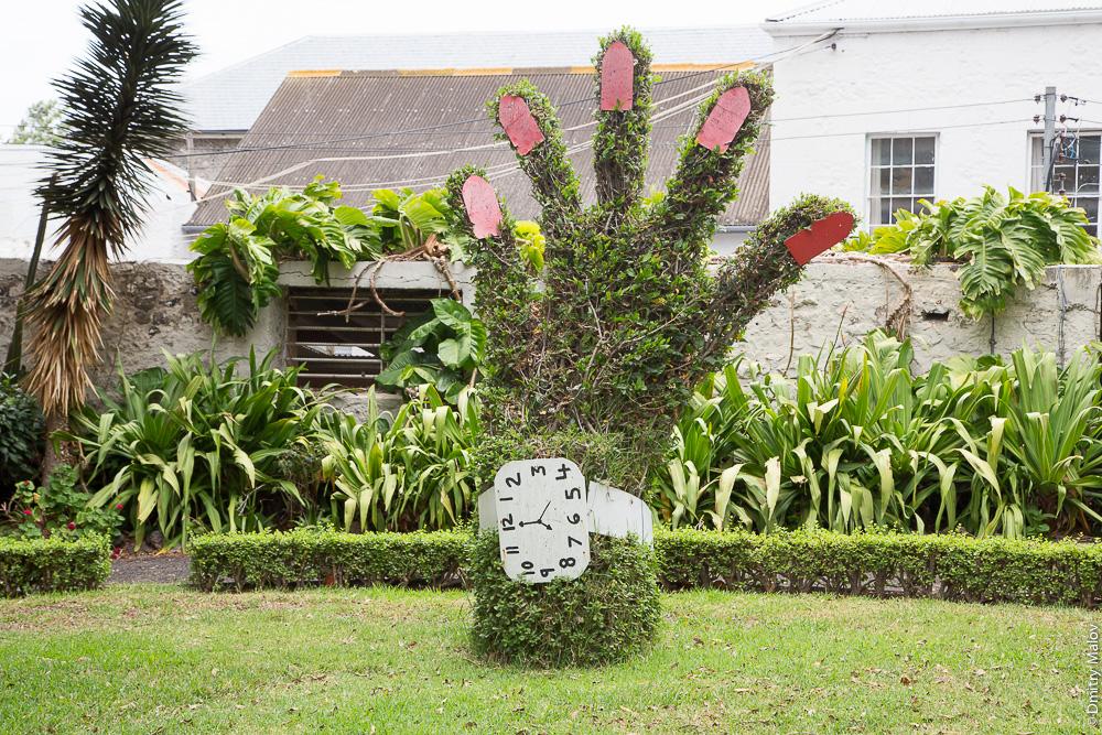 Castle Gardens, Jamestown, St Helena. Парк Кастл Гарденз, Джеймстаун, остров Святой Елены