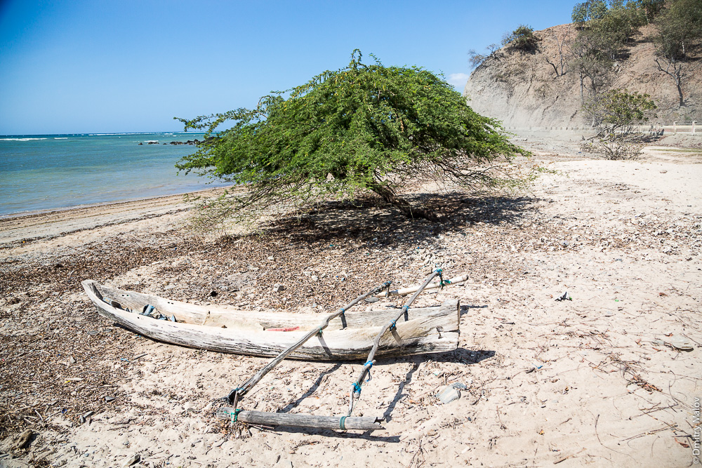 Восточный Тимор, океан, море, природа, дерево, пляж с песком, каное с балансиром. East Timor, Timor-Leste, ocean, sea, sand beach, outrigger canoe, tree