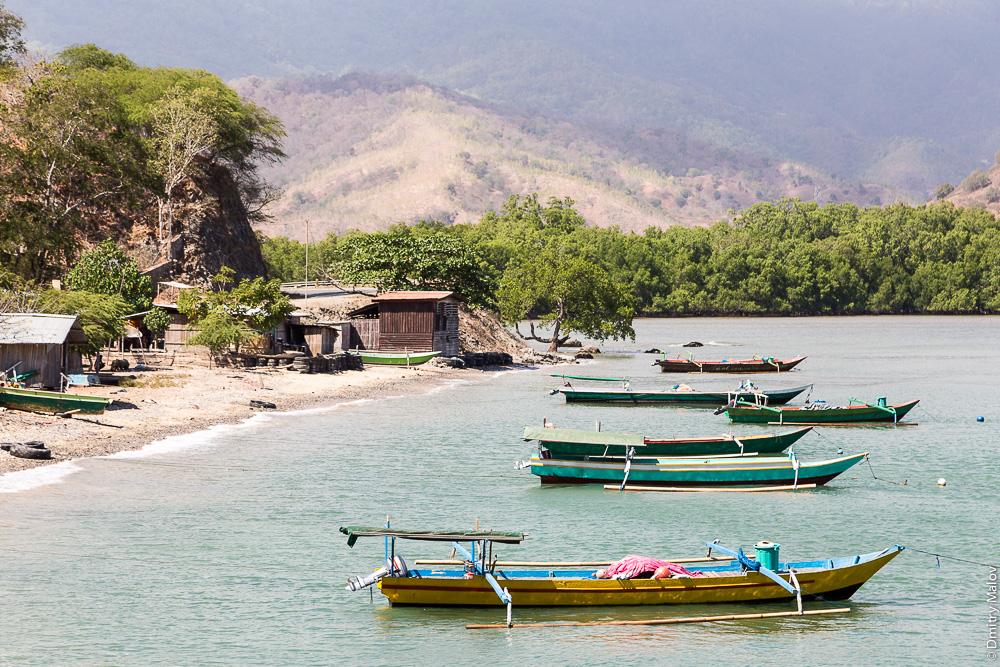 Восточный Тимор, холмы, горы, океан, море, природа, деревья, лес, пляж с песком, каное с балансиром. East Timor, Timor-Leste, ocean, sea, sand beach, outrigger canoe, trees, forest, mountains