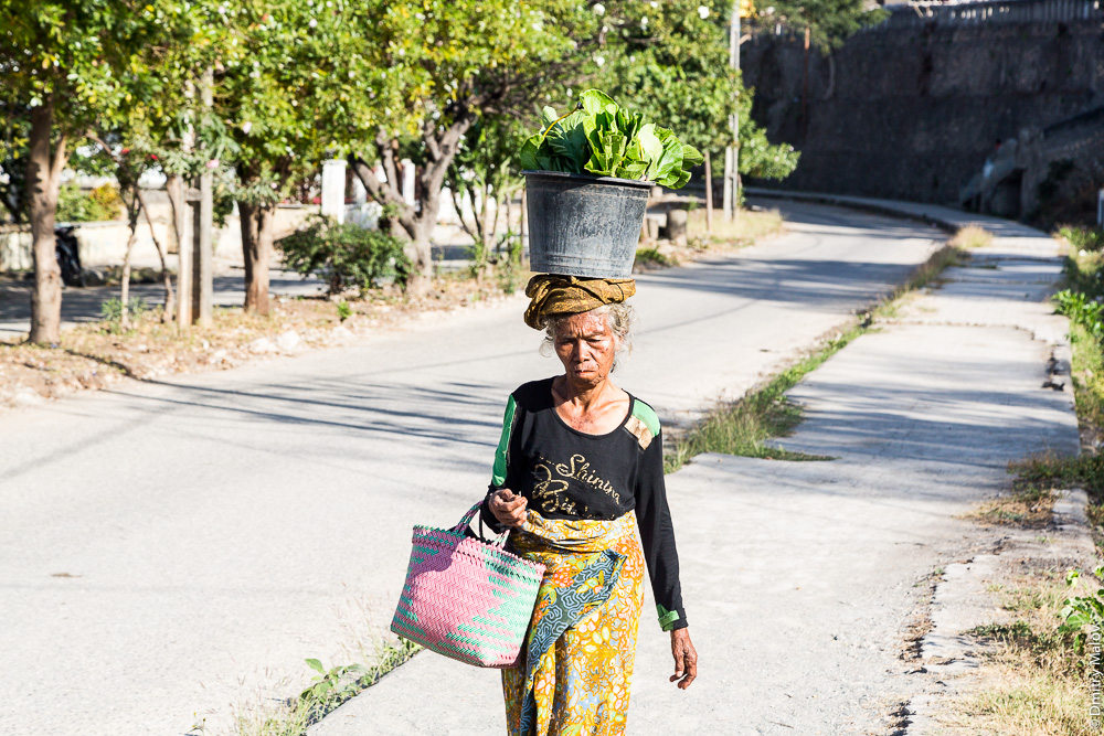Пожилая женщина несёт на голове ведро с зеленью, Баукау, Восточный Тимор