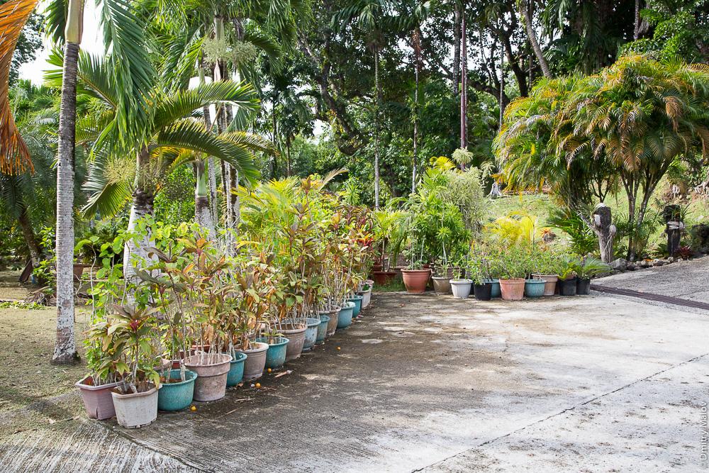 Мягкие границы общественных пространств из цветочных горшков. Палау