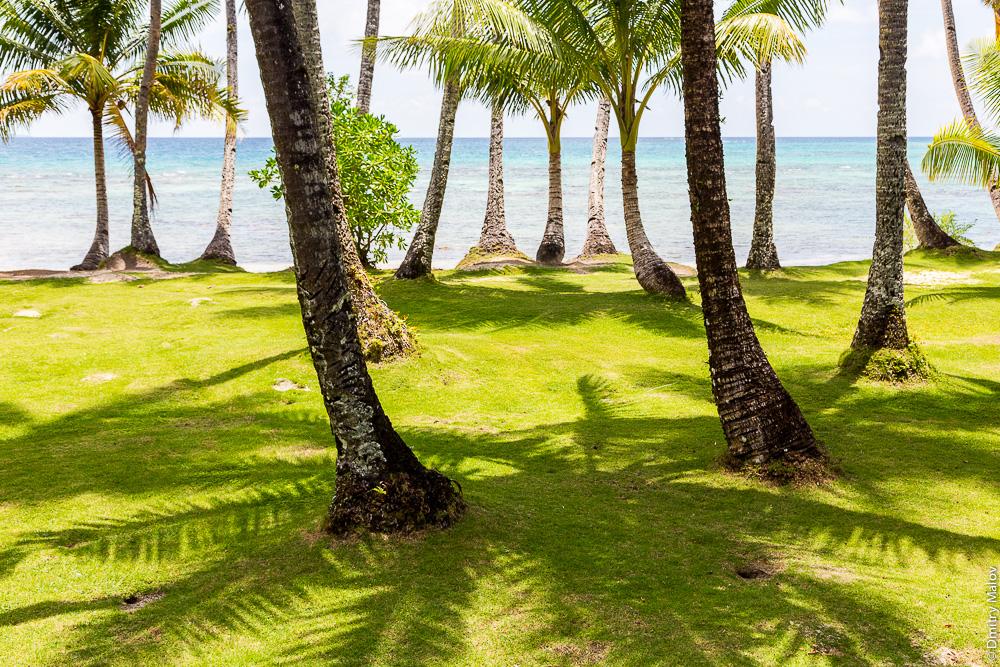 Утро, пальмы, море на острове Трук (Чуук), Микронезия. Blue Lagoon Resort, Weno, Truk/Chuuk, Caroline Islands, Micronesia.