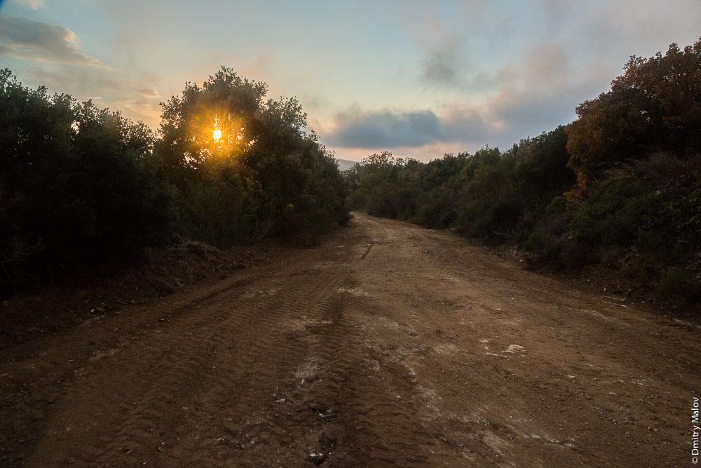 Вечер. Солнце садится за лес и дорогу на Святой Горе Афон