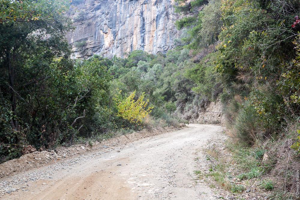 Грунтовая дорога, обрыв и лес на Святой Горе Афон