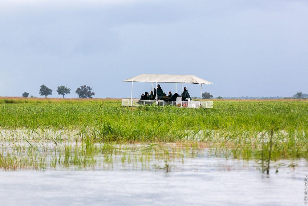 Chobe river cruise, Kasane, Botswana. Круиз по реке Чобе, Касане, Ботсвана