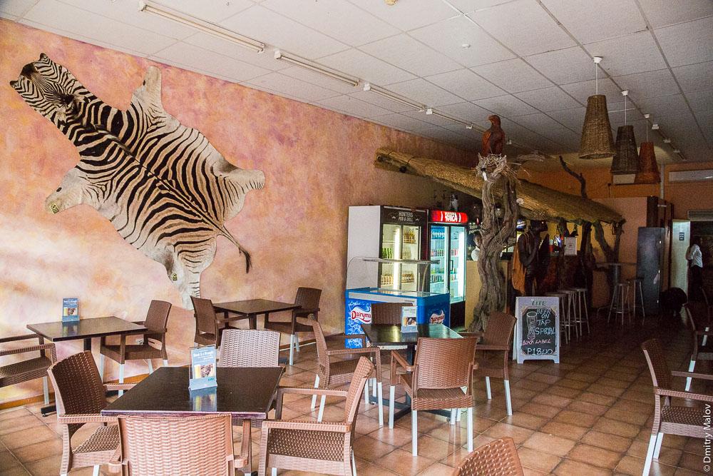Центр города Касане, Ботсвана, африканское кафе, шкура распятой зебры, разливное пиво. Kasane, Botswana - city centre, african cafe, Zebra skin, beer on tap