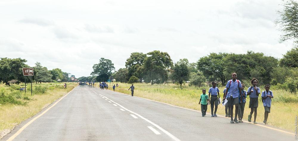 School children/students on the road, near the town of Katima Mulilo, Caprivi strip, Namibia, Africa. Школьники на дороге, полоса Каприви, Катима-Мулило, Намибия, Африка