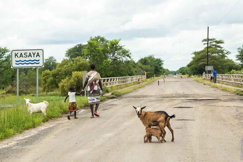 Kasaya river bridge, M10 road Zambia, Sesheke town - Livingstone, Barotseland, Africa. Трасса Сешеке-Ливингстон, Баротселенд, Замбия, Африка. Мост через реку Касайя. Umuntu ni lungu skirt