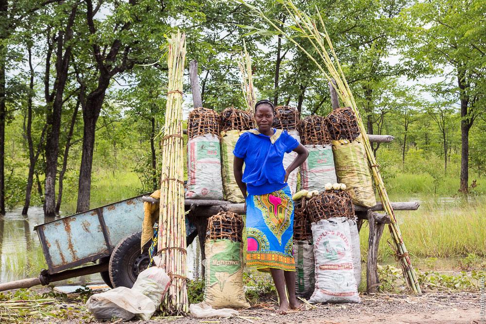 Young black african lozi lady sells charcoal, M10 road Zambia, Barotseland, Sesheke town - Livingstone, Africa. Трасса Сешеке-Ливингстон, Баротселенд, Замбия, Африка. Молодая африканка племени лози продаёт уголь около дороги.