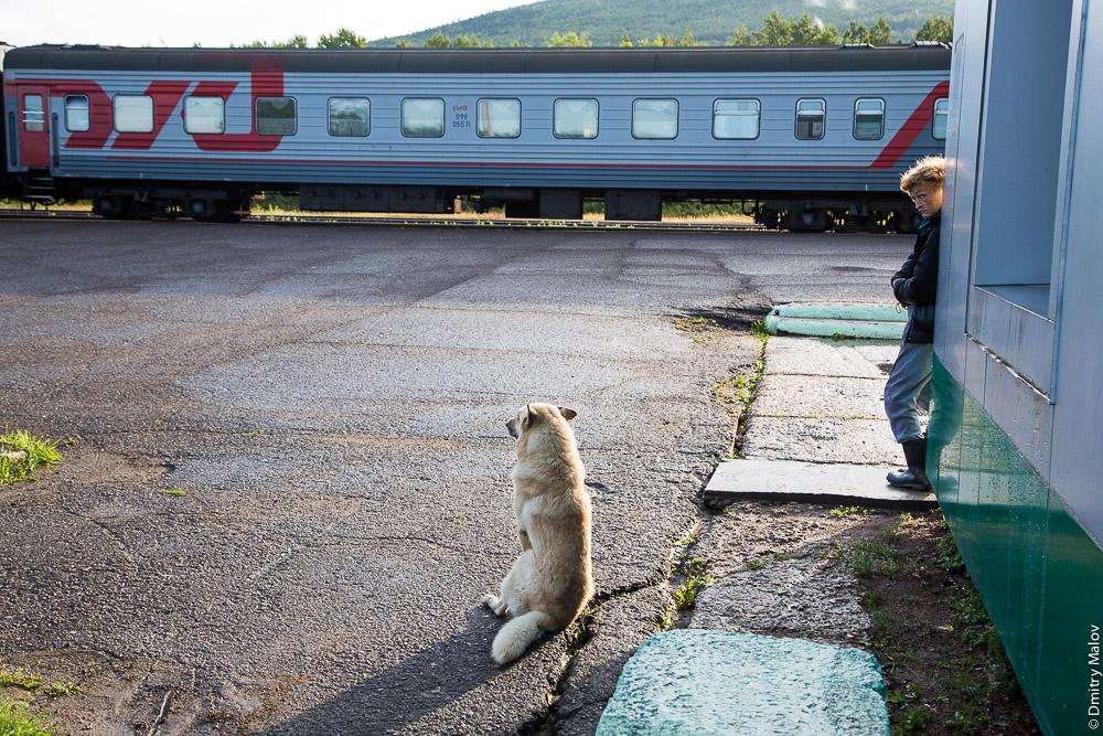 Станция Тымовск, Сахалин, Россия. Стоянка поезда №1. Пассажирский вагон 099 05571. Tymovsk station, Sakhalin, Russia. Express train 1 has arrived, passenger car