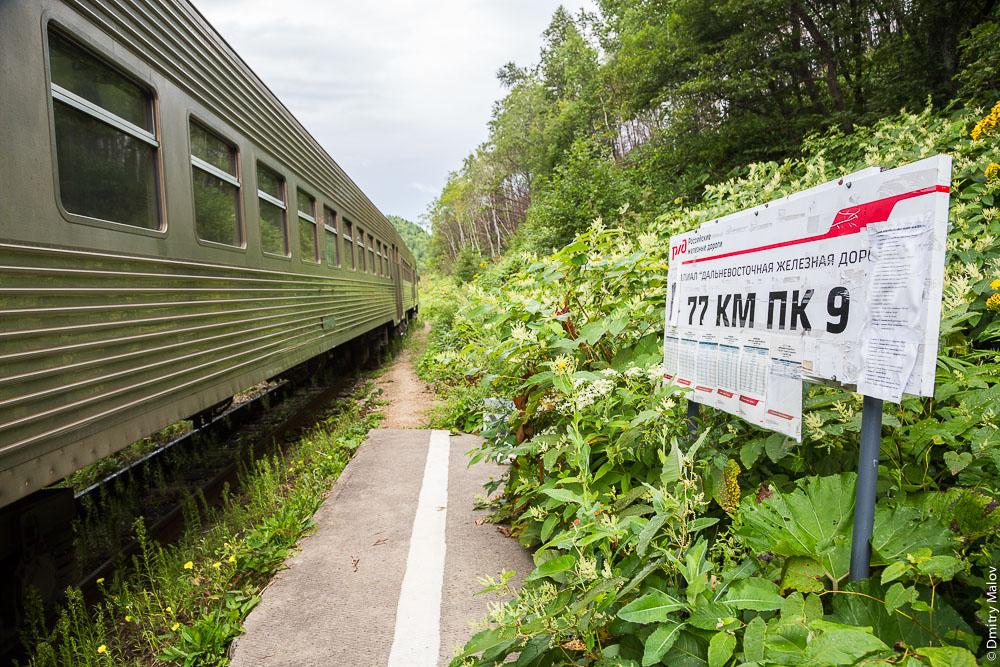 "Платформа «77 км пк 9», линия Холмск—Южно-Сахалинск, Сахалин. The railroad stop ""77km"", Kholmsk-Yuzhno-Sakhalinsk railroad line, Sakhalin, Russia."