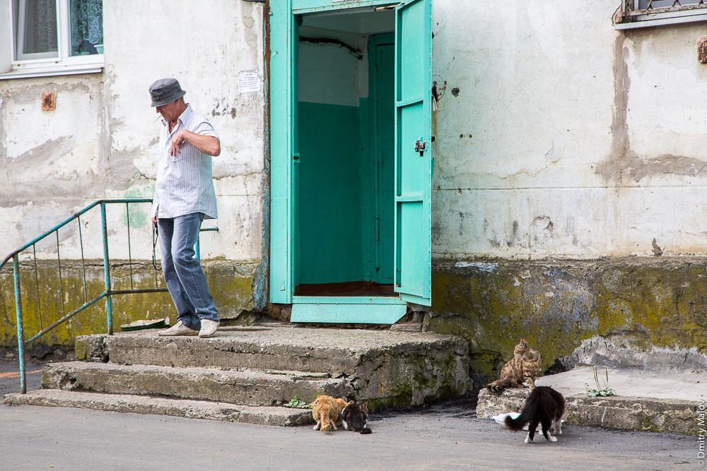 Мужчина с кошками, улица Героев, 3, Холмск, Сахалин. A man with cats, Kholmsk, Sakhalin