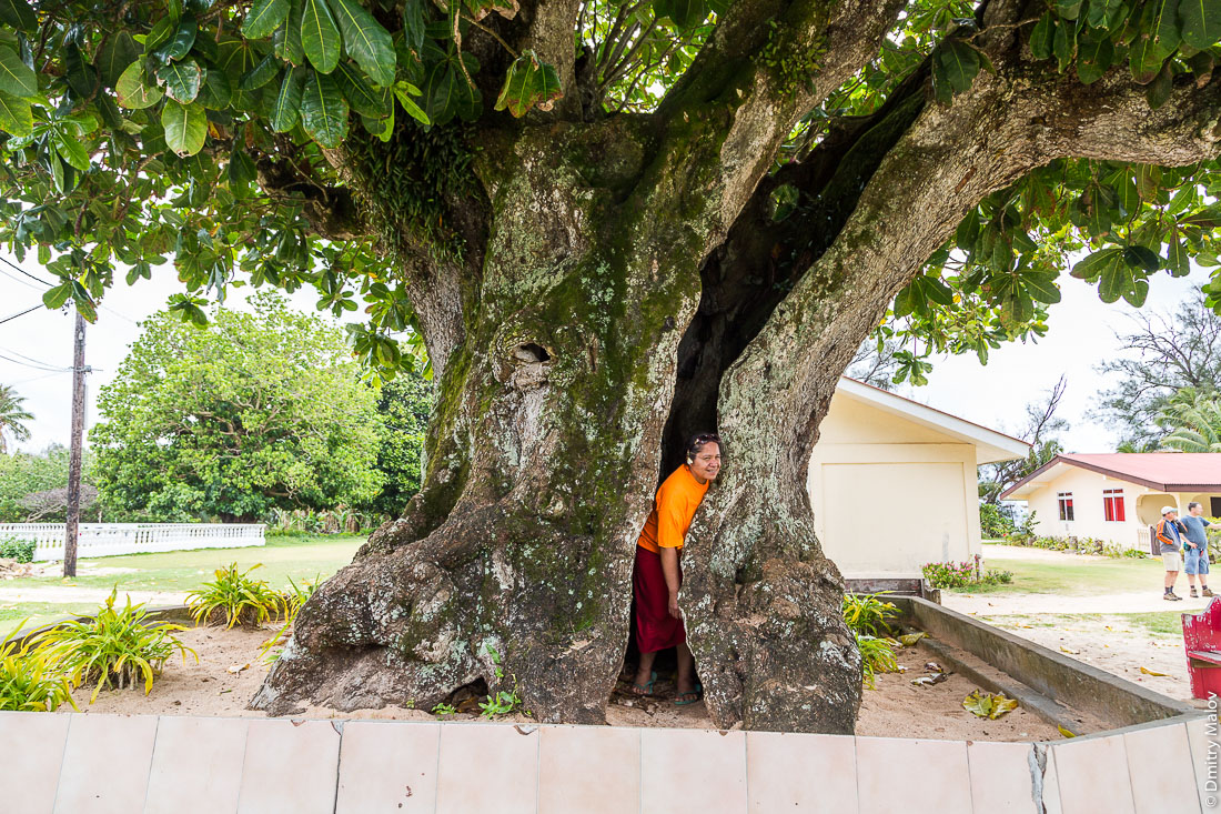 A lady inside a Hotu tree (Barringtonia asiatica). Анапото, Риматара, архипелаг Острал (Тубуаи), Французская Полинезия. Anapoto village, Rimatara, the Austral archipelago (Tubuai), French Polynesia.