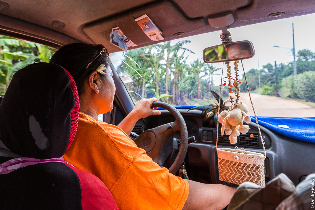 Местный гид Нелли ведёт машину по острову Риматара, архипелаг Острал (Тубуаи), Французская Полинезия. Local guide Nelly drives us on Rimatara, Austral archipelago (Tubuai), French Polynesia.