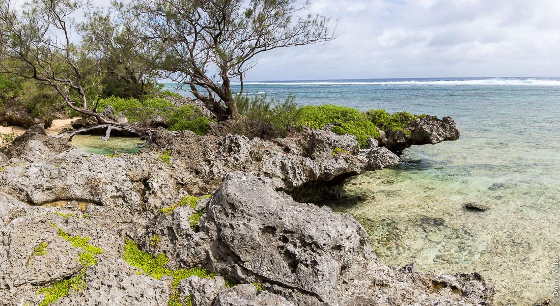 Пляж и камни около деревни Мутуаура, Риматара, архипелаг Острал (Тубуаи), Французская Полинезия. A rocky beach near Mutuaura village, Rimatara, the Austral archipelago (Tubuai), French Polynesia.