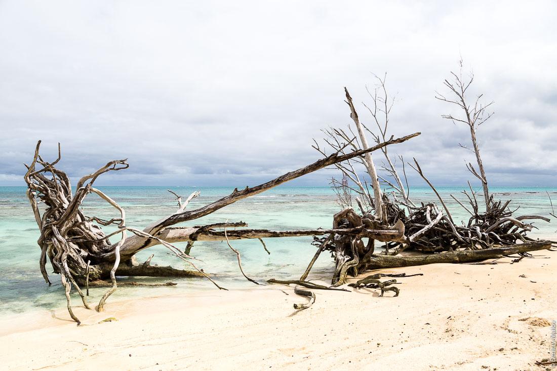 Пляж между деревнями Маханатоа и Анатону, остров Раиваваэ, архипелаг Острал (Тубуаи). Raivavae island, Astral (Tubuai) Islands, French Polynesia. A beach between Mahanatoa village and Anatonu village