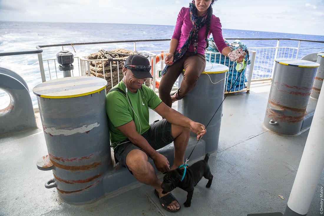 Щенок. На борту грузо-пассажирского корабля Tuhaa Pae IV на пути с острова Раиваваэ, архипелаг Тубуаи (Острал) на остров Рапа-Ити, острова Басса, Французская Полинезия. On board the cargo-passenger ship Tuhaa Pae IV from Raivavae, Tubuai/Austral islands to Rapa-Iti, Bass islands, French Polynesia. A puppy dog