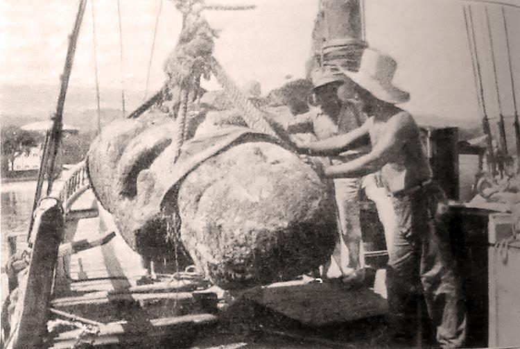 Le débarquement à Papeete des tiki de Raivavae le 13 janvier 1934 – Photo L'illustation Journal universel