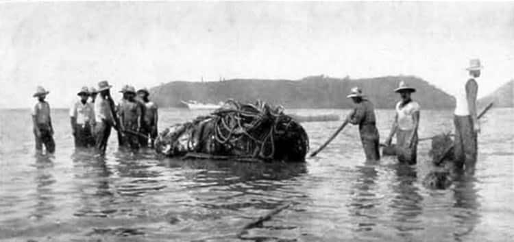 Embarkation of tiki at Raivavae late 1933