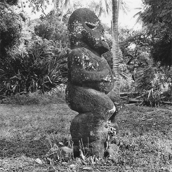 Profile of one of the Raivavae tiki at the Museum of Tahiti, in Mamao Papeete, in 1951. Photo Philippe Mollet