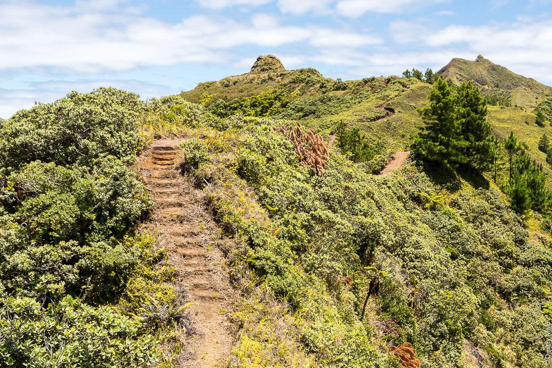 Полинезийский форт Моронго Ута, остров Рапа-Ити, острова Басс, Французская Полинезия. Pare (Polynesian fort) of Morongo Uta, Rapa-Iti, The Bass Islands, French Polynesia.