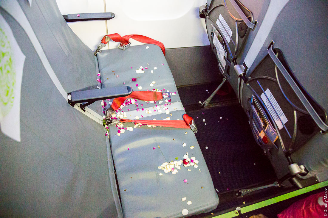 Passengers disembarked. Fallen flower petals inside airplane cabin of Air Tahiti ATR 72-600, French Polynesia. Французская Полинезия. Пассажиры вышли, оставив в салоне самолёта опавшие лепестки цветов.