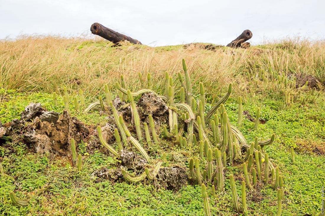 Разрушенный форт, 2 пушки. Остров Фернанду-ди-Норонья, Бразилия. Destroyed fort, 2 cannons. Fernando de Noronha island, Brazil.