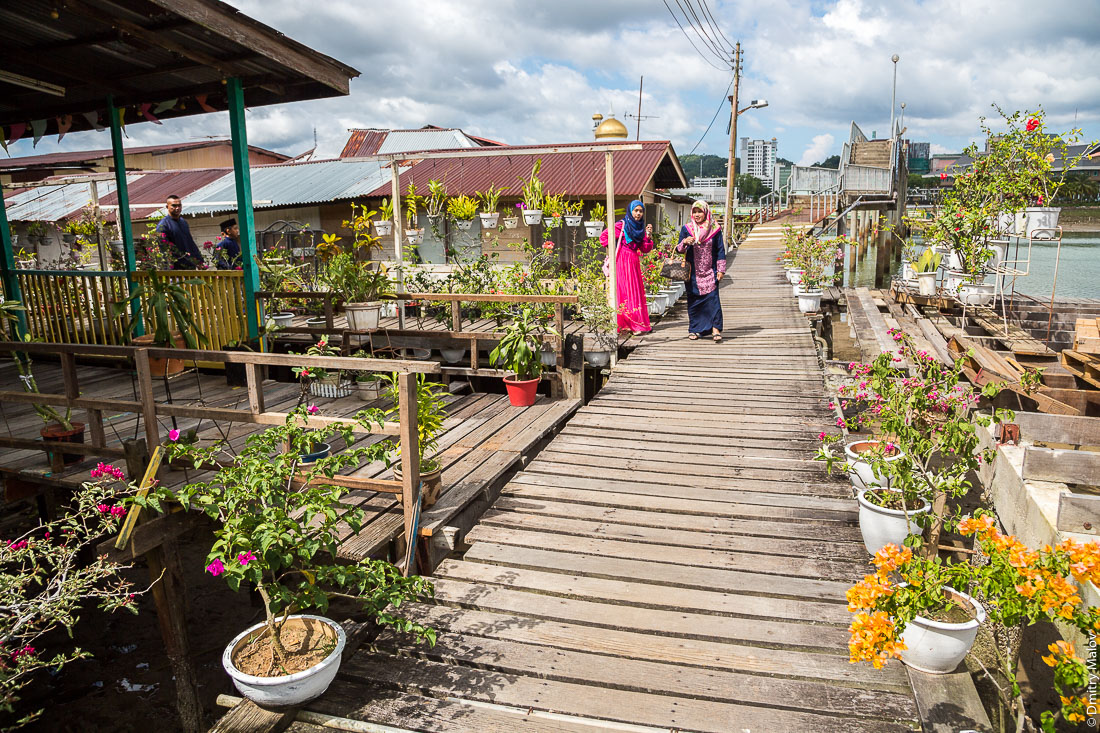 Уличные цветы в горшках в районе Тамой в деревне на сваях Кампунг-Айер, Бандар-Сери-Бегаван, Бруней-Даруссалам. Street with greenery in flower pots near Tamoi district, at stilt village Kampong Ayer, Bandar Seri Begawan, Brunei Darussalam