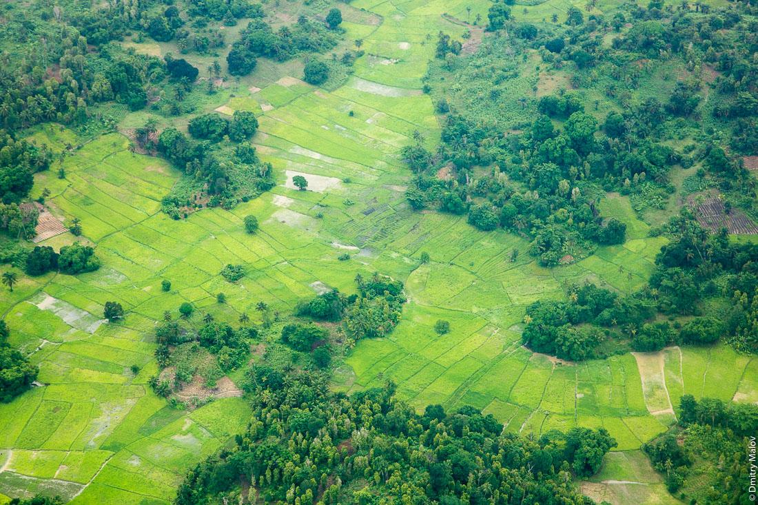 Рисовые поля, остров Пемба, архипелаг Занзибар, Танзания. Фото с самолёта. Rice patches, Pemba island, Zanzibar archipelago, Tanzania. Aerial photo