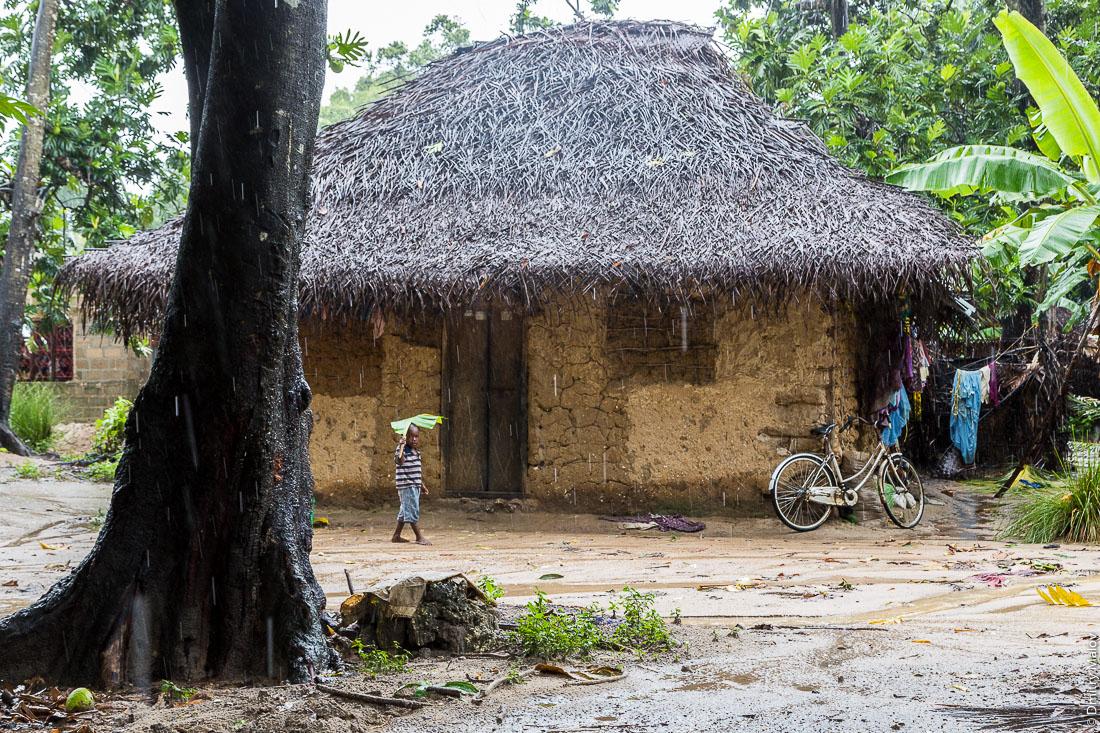 Местный чёрный мальчик на фоне дома из глины и палок, остров Пемба, архипелаг Занзибар, Танзания. A local black boy with a traditional thatched roof clay and sticks house in the background, Pemba island, Zanzibar archipelago, Tanzania.