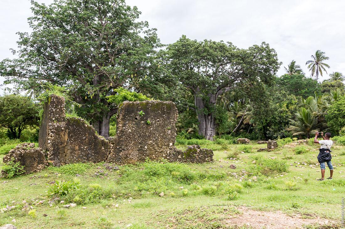 Руины, остров Пемба, Занзибар, Танзания. Mkame Ndume (Pujini) Ruins, Pemba island, Zanzibar, Tanzania