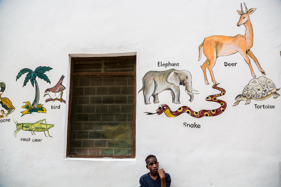 Граффити в детском саду — гусь, птица, кузнечик, слон, олень, змея, черепаха. Каменный город, Занзибар-сити, остров Унгуджа, Танзания. Stone Town, Zanzibar City, Unguja island, Tanzania. Graffiti in a kindergarten - a goose, a bird, a grasshopper, an elephant, a deer, a snake, a tortoise.