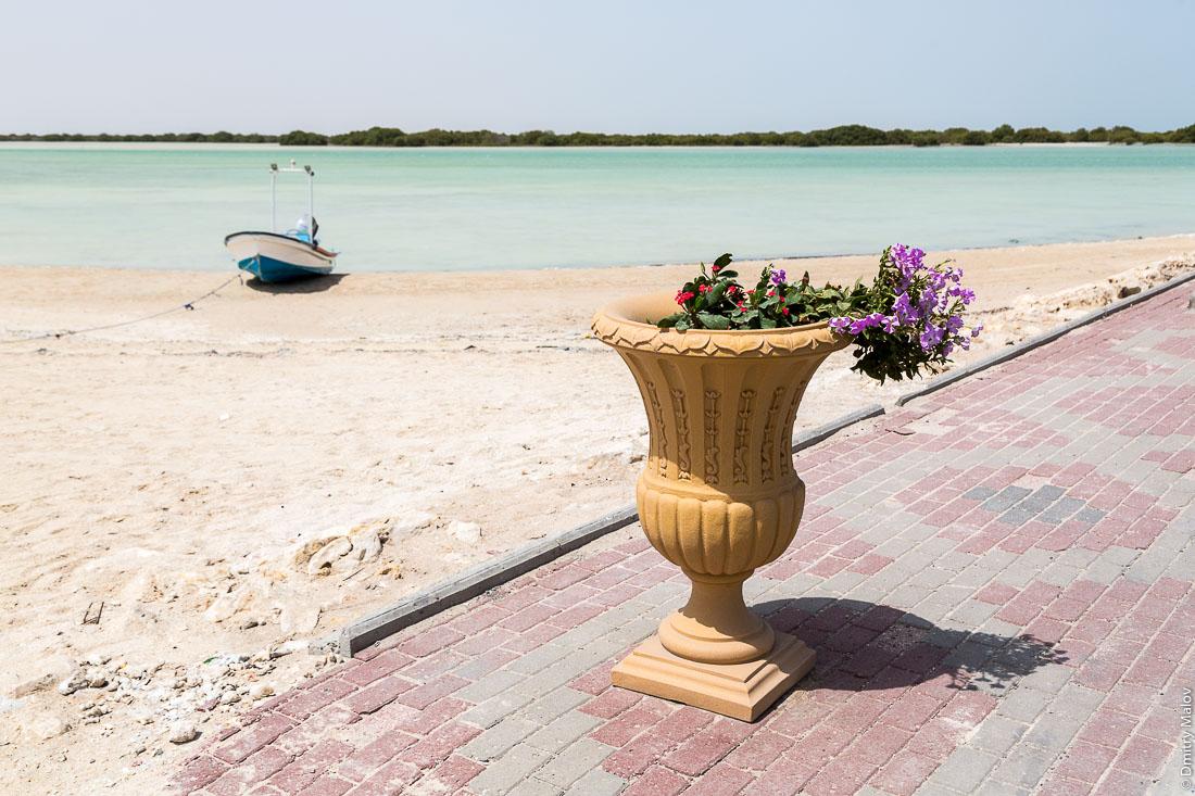 Набережная и мангровые заросли. Город Аль Дакира, Катар. Embankment and mangroves. Al Thakhira (Al Dhakira) town, Qatar.