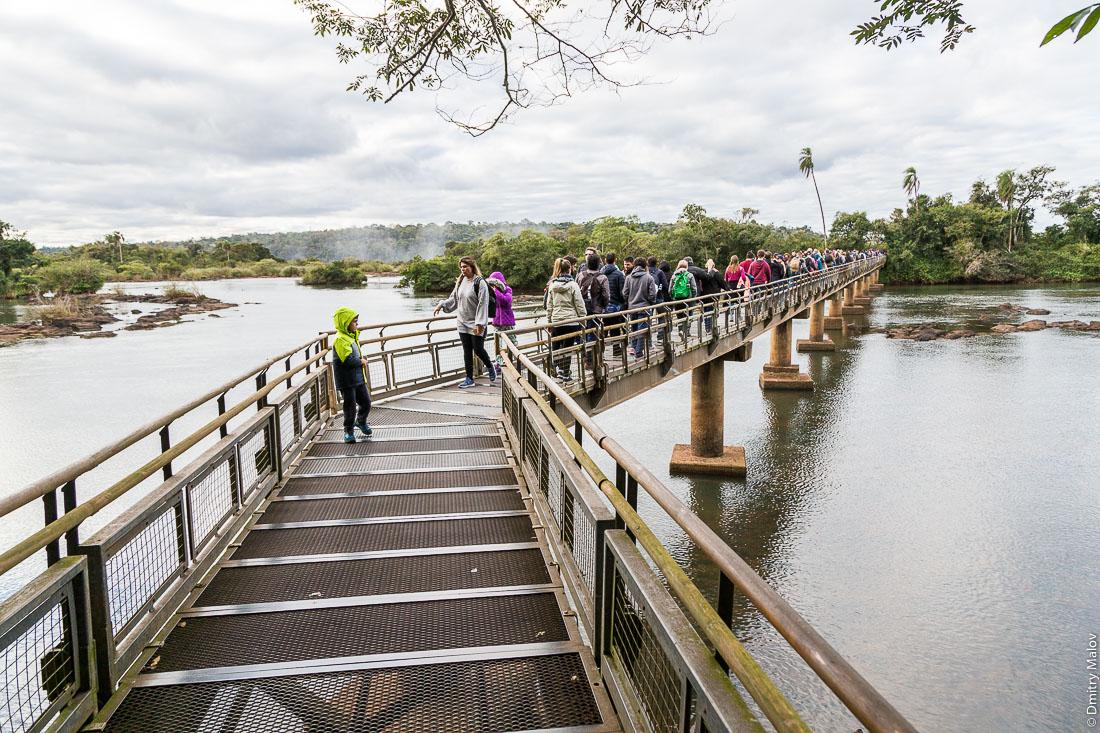 Трекинговые маршруты в джунглях, национальный парк, Водопады Игуасу, Аргентина. Argentina jungle hiking trail - canopy boardwalk in Iguazu National Park.