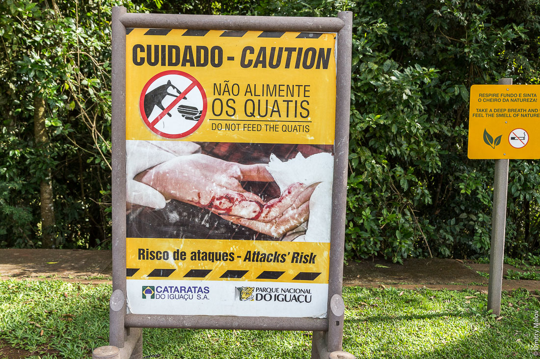 "Não alimente os quatis. Do not feed quatis poster. Parque Nacional Iguassu, Brazil. Плакат об опасностях ""Не кормите коати"", Национальный парк Игуасу, Бразилия"