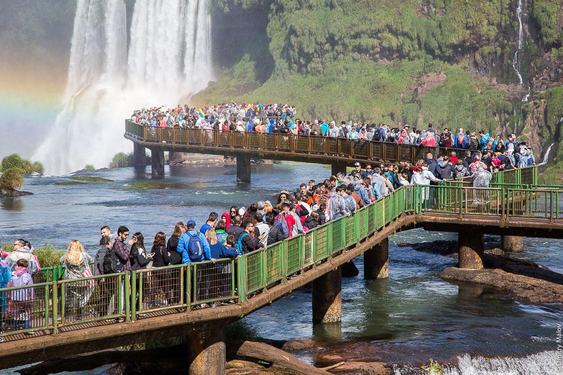 Трекинговые маршруты в джунглях, национальный парк, Водопады Игуасу, Бразилия. Смотровая площадка водопада Глотка дьявола. Brazilian jungle hiking trail - canopy boardwalk in Iguazu National Park. Devil's Throat view point, Iguazu Falls, Brazil, Argentina.