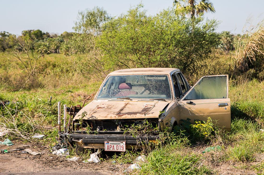 APA 019 Paraguay license plate as seen on overgrown destroyed abandoned car in Chaco region. Парагвайский автомобильный номер APA019, заросшая брошенная машина, регион Чако.