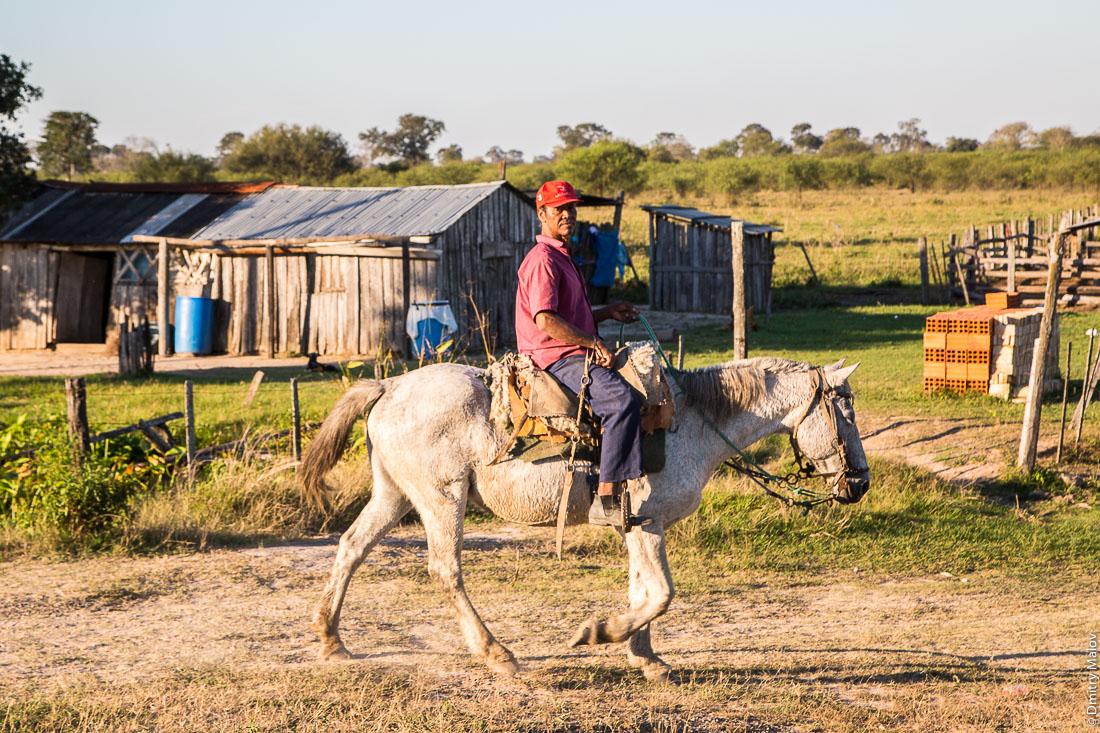 Индеец едет на серой лошади шагом вдоль дороги№9 Рута Трансчако, Гран-Чако, Парагвай. Native American running/walking a gray horse along the road number 9 Ruta Transchaco, Gran Chaco, Paraguay.